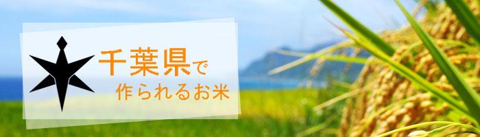 千葉県の特徴