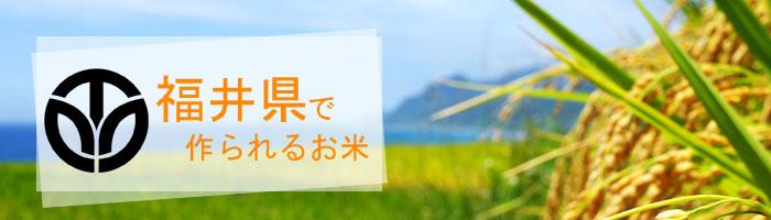 福井県の特徴