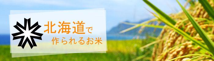 北海道の特徴