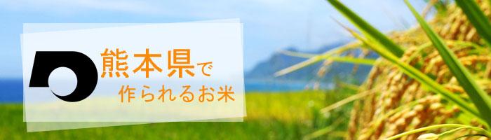 熊本県の特徴