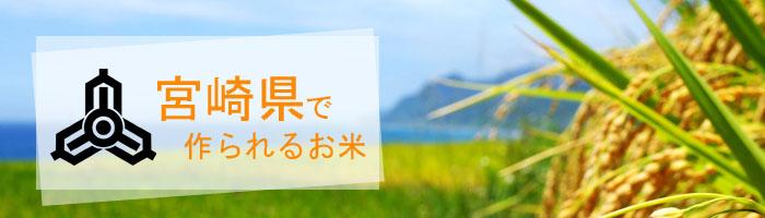 宮崎県の特徴