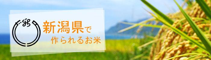 新潟県の特徴