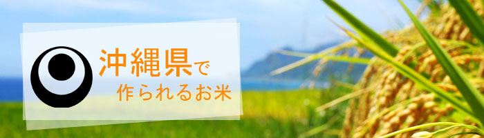 沖縄県の特徴