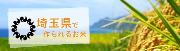 埼玉県の特徴
