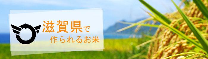 滋賀県の特徴