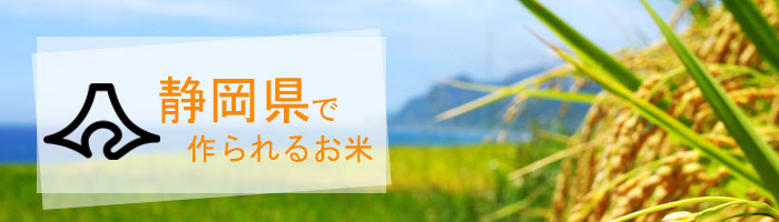 静岡県の特徴