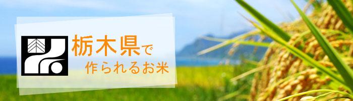栃木県の特徴