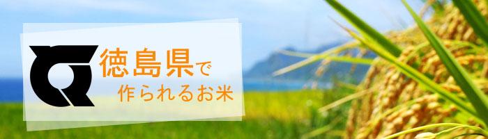 徳島県の特徴