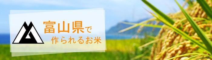 富山県の特徴